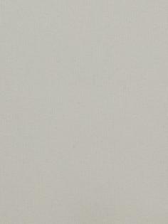 Plain Weave Polyester PFP
