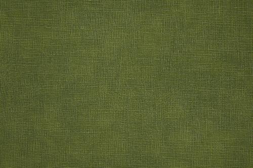 Sample - Kiwi