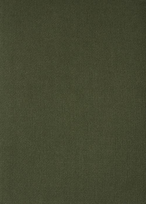 DELUXE 140CM GREEN TEA VELVET UPHOLSTERY FABRIC